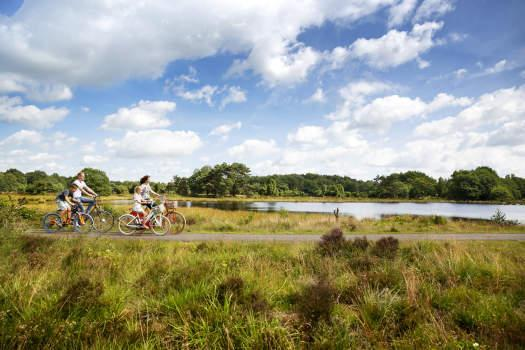 Cycling and Hiking | Discover drenthe on foot or by bike