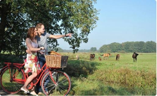 Cycling Package - Discover Drenthe on the bicycle!